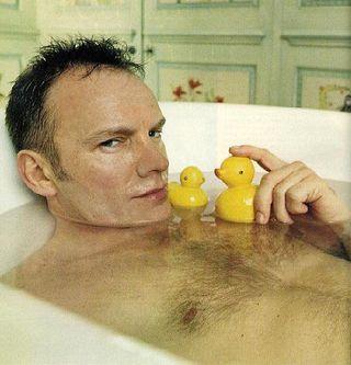 Sting_duck