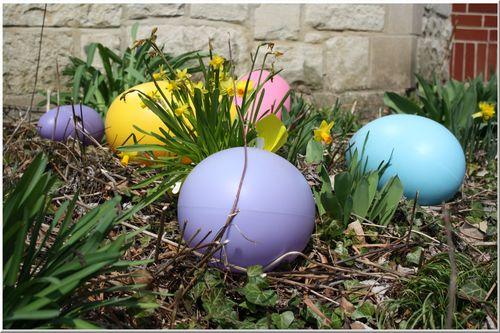 Egggarden
