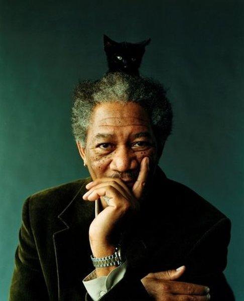 Morgan freeman and cat in hair