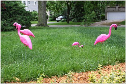 Lawn flock