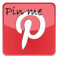 Pin logo2