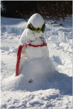 Snow slump